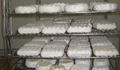 verschiedene Camembert im Reifeschrank Bioland