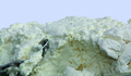 Nahaufnahme des Ziegenfrischkäses, mit lockerer, körniger Konsistenz