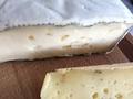 geaschter Camembert Bioland