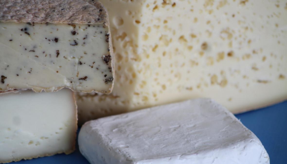 ein üppiges Käseangobt in einem Ladengeschäft präsentiert